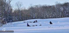 <3 dog sled #CDNGetaway