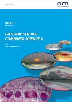 Additional or Applied Science GCSE!?!?