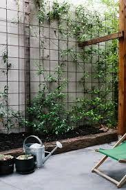 Image result for creeper vertical garden diy