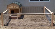 mini pig house - Google Search