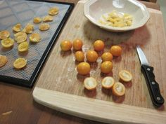 The little kumquat tree I started in my front yard a couple of years ago was loa. The little kumqu Kumquat Recipes, Fruit Recipes, Gourmet Recipes, Dessert Recipes, Healthy Recipes, Recipies, Chocolate Pies, Easter Chocolate, Kumquat Tree