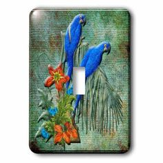 3dRose Bird art with pretty parrots and flowers on green background, Double Toggle Switch