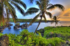 How the four of us traveled to Maui for less than Hawaii vacation. Hawaii on a Budget. How to save money on your travels. Maui Hawaii, Hawaii Honeymoon, Hawaii Vacation, Honeymoon Destinations, Dream Vacations, Vacation Spots, Hawaii Usa, Kauai, Wailea Maui