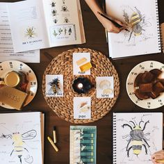 """350 Likes, 14 Comments - Kristine Wolf Wilson (@creativeandgrowingkids) on Instagram: """"Finished up our bee study.  RESOURCES: life cycle cards from www.susieshomeeducationideas.com…"""""""
