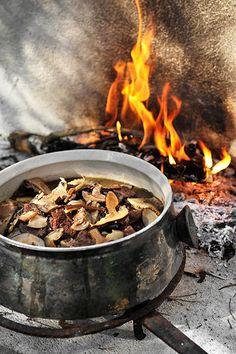 Stoofpot van paddenstoel en truffel