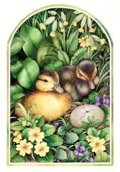Valerie Greeley - D is for Duckling.jpg