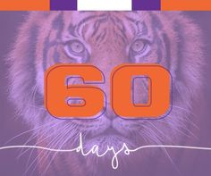 Kickoff is in just 60 days! Clemson Football, Tigers, Big Cats