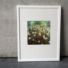 """Die Serie """"Lichtblick"""" besteht aus verschiedenen Landschaftsbildern. Die Bilder sind im Polaroidverfahren auf alte Filme aufgenommen. Dadurch entsteht der leicht verschwommene und schleierhafte Charakter, der an Aquarelle oder impressionistische Gemälde erinnert. Die Bilder wirken wie Traumsequenzen."""