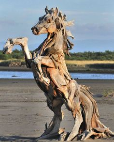driftwood he scavenges from the beaches and waterways of Washington State's Pacific coastline