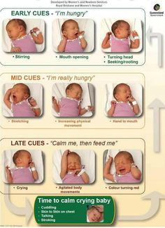 Chart to you learn the cues when a baby is hungry. Nice to determine the hunger signs before loud crying :)