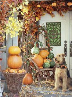20 Fantastic Fall Porches - The Cottage Market