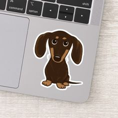 Shop Cute Shorthaired Chocolate Dachshund Cartoon Sticker created by jennsdoodleworld. Personalize it with photos & text or purchase as is! Dapple Dachshund Puppy, Dachshund Puppies For Sale, Funny Dachshund, Mini Dachshund, Dachshund Cake, Cartoon Stickers, Cute Stickers, Laptop Stickers, Chocolate Dachshund