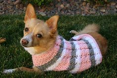 Kelsey modeling the sweater I made for her.