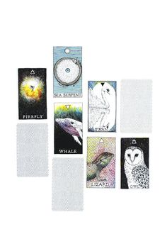 The creatures of the Wild Unknown Animal Spirit Deck offer insight into relationships. personalities, behaviors and tendencies. Divided into five elemental suits of Earth, Air, Fire, Water and Ether,