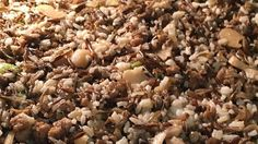 Wild rice mix and sausage form the foundation of a dressing that's sure to become a family tradition.