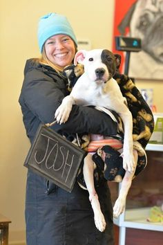 When He Was Found They Said He'd Never Walk -- Now, It Looks Like There's Hope! -   Earlier this year, animal control in Chicago answered the call for a pup found in a dumpster. If the fact that he was tossed aside like trash wasn't enough, the poor eight-month-old Pit Bull also suffered from a bad back injury. Someone had clearly abused him using blunt force trauma....