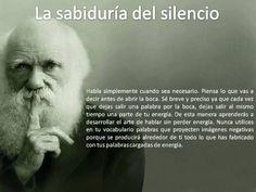 silencio Al Anon, Peace Love And Understanding, Quotes En Espanol, Peace And Love, Decir No, Einstein, Best Quotes, Believe, Wisdom