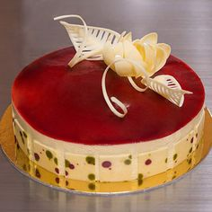 White Chocolate Raspberry Entremet