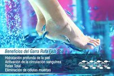 Garra, Fish Pedicure, Spa, Relax, Nail Bar, Nails, Natural, Movie Posters, Ideas