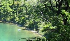 Scenic Fairy bay walk - Pelorus Sound