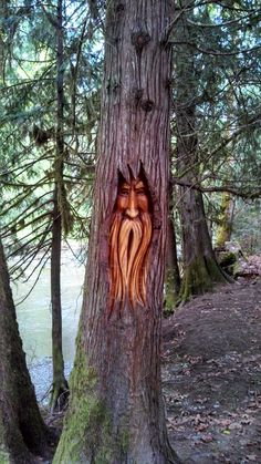 Wood Carving Faces, Tree Carving, Wood Carving Art, Abstract Sculpture, Wood Sculpture, Tree Faces, Unique Trees, Wood Tree, Wood Creations