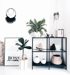 """1,199 Likes, 20 Comments - Home Styling Inspo & Webstore (@oliveetoriel) on Instagram: """"Have been working on our website all day (like, since 830am and am still going!). Check out…"""""""