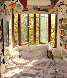 window bed.