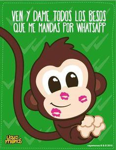 Vaya monos