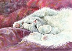 White cat little angel limited edition print of painting anne marsh art