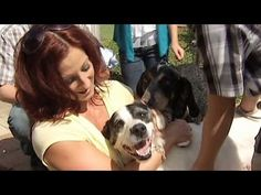 Family Gets Back Lost Dog Missing Over Three Years And Their Emotional Reunion Made Me Cry - Page 2 of 2 - Rescue Dog News