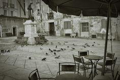 Good appetite,pigeons! - Cagliari
