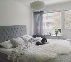 Bedroom ideas • bed • grey bed • window • feather lamp • Mio • dream • monstera