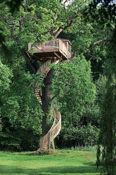 A winding staircase tree house in the middle of a dream backyard, ethereal indeed