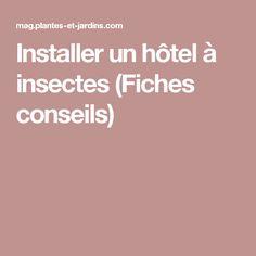 Installer un hôtel à insectes (Fiches conseils)