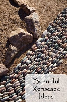 Beautiful Xeriscape Ideas- great for desert climate :)