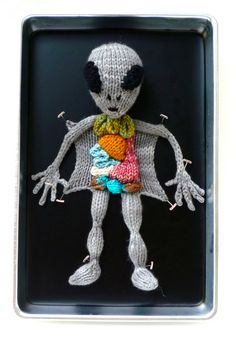 Cruelty-Free Knit Human and Creature Anatomy Specimens by Emily Stoneking  http://www.thisiscolossal.com/2015/10/knit-anatomy/
