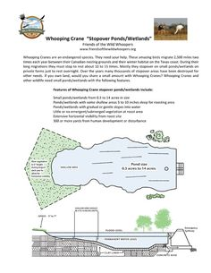 "Friends of the Wild Whoopers, (FOTWW) Whooping Crane ""Stopover Ponds/Wetlands"" Plans"