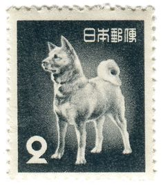 Japan postage stamp: akita dog c. 1953 There is a brief mention of this specific stamp (or a similar one) in an article on the Telegraph titled: Morie Sawataishi: Saviour of Japan's akita Samurai dog Japanese Akita, Japanese Dogs, Akita Dog, Hachi A Dogs Tale, Japanese Stamp, American Akita, Hachiko, Postage Stamp Art, Tier Fotos