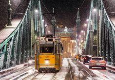 I Spent The Last Three Christmas Seasons Capturing The Wonderful Festive Air Of My Hometown Liberty Bridge, Heart Of Europe, Nature Photos, Travel Photos, Beautiful Places, Street View, Seasons, City, Photography