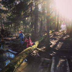 Eilen Hoplopissa tänään metsässä. Arvatkaa kumman lapset valitsivat kun kysyin kummassa oli mukavampaa? Metsässä luonnollisesti! #metsä #nature #woods #forest #natureforest #luonnonsuojelualue #villaelfvik #metsäretki #parhaatleikit #ulkoilua #maaliskuu
