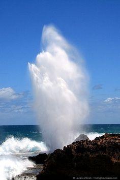 Blowhole near Carnarvon, Western Australia