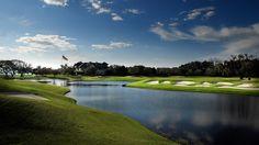 PGA Tour: Il campo di Sea Island Resort al test dei professionisti.