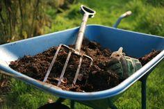 7 dicas para deixar sua horta mais produtiva – CicloVivo