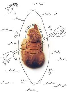 dessin sur mon chat Pixel Le Chat / i draw on my cat, Pixel the cat