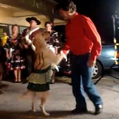 Salsa Dancing Dog!  Love love this video