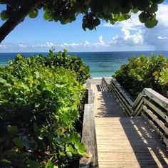 Jupiter Beach ~ Florida miss this beach Jupiter Beach Florida, Florida Beaches, Oh The Places You'll Go, Places To Travel, Places To Visit, Key West Florida, I Love The Beach, Summer Dream, Island Beach