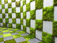 現代にも通じる苔の魅力とは? 苔(コケ)と聞いてどんなイメージを持つでしょうか?京都などの寺社に見られるような…nice use of moss