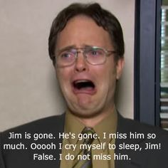 Dwight / The Office