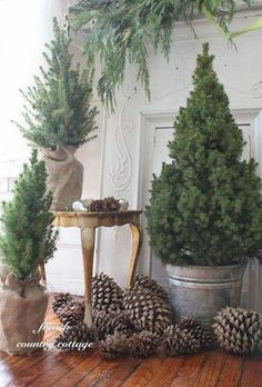 This would be awesome on the front porch! Use pine cones and small pine trees in burlap wrapped pots or metal buckets for a simple, natural look for your holiday decor. French Country Christmas, Cottage Christmas, Mini Christmas Tree, Rustic Christmas, Winter Christmas, Natural Christmas Tree, Christmas Greenery, Primitive Christmas, Outdoor Christmas