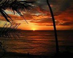 #MauiSunset